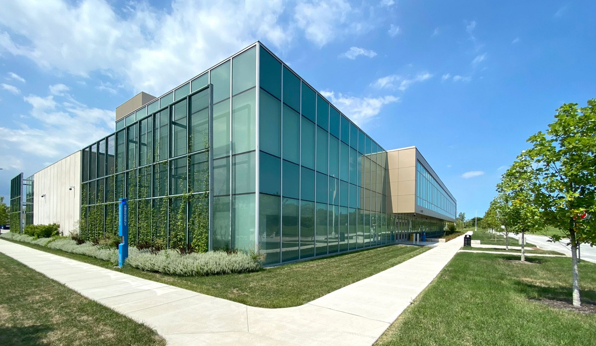 chicago higher education city college architecture